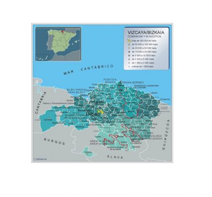 Mapa Vizcaya por municipios plastificado gigante